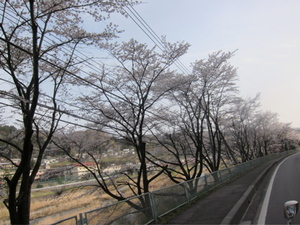 Img_4115